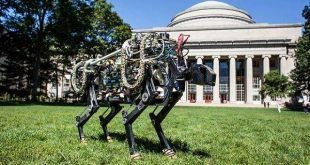 """麻省理工研发""""盲眼""""猎豹机器人,纯靠平衡算法走天下"""
