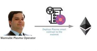 技术指南 | Plasma Cash区块结构的规范