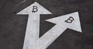BCH理性和谐分叉的建议